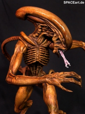 alien_3_alien_warrior_deluxe_kit_al117-f